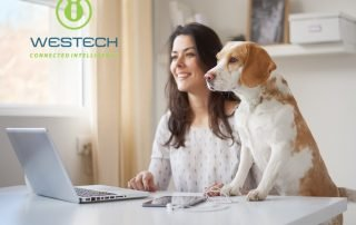work from home work remotely virtual it support with westech