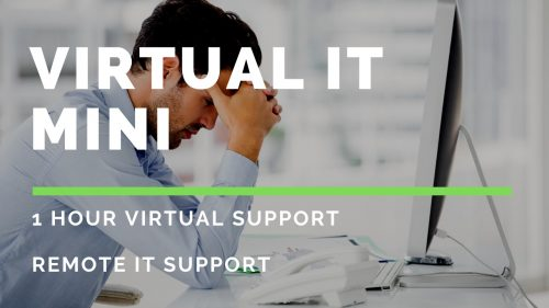 Virtual IT Mini 2